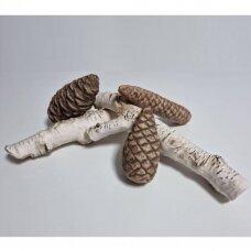 Dekoratyvinės keramikinės įvairios IV malkos biožidiniams